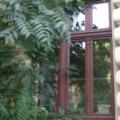 Holzfenster 3 Flügelig mit Oberlicht 3 Flügelig mit Kapitellen