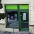 Holz Ladentüren mit Seitenteile und Oberlicht Farbe Moosgrün