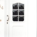 Kunststoff Haustür mit Rodenberg Füllungen 202-15 Weiß