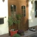 Kunststoff Haustür mit Rodenberg Füllungen 202-15 Golden Oak